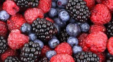 Frutos rojos. Foto: EL Norte Hoy
